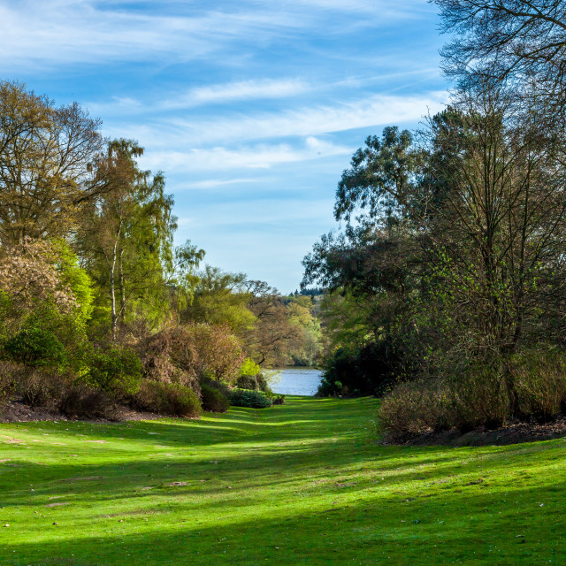 """Virginia Water Landscape 1"" stock image"