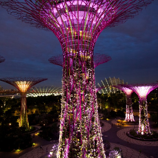 """""""Gardens on the bay"""" stock image"""
