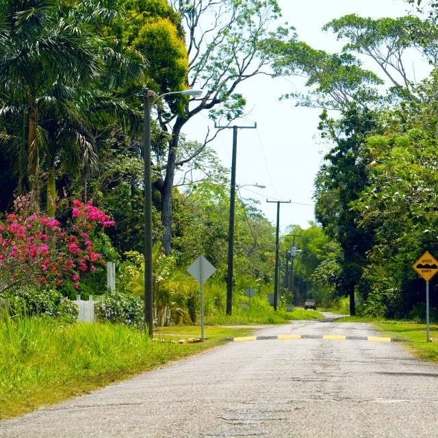 """Village road in the tropics"" stock image"
