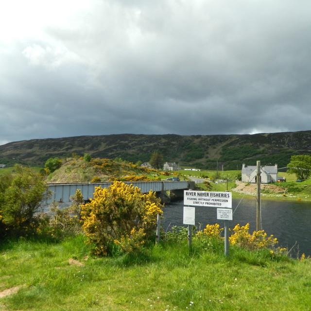 """River Naver, Sutherland"" stock image"