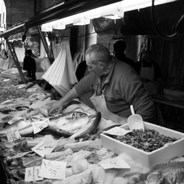 """""""Fish Market Venice Italy"""" stock image"""