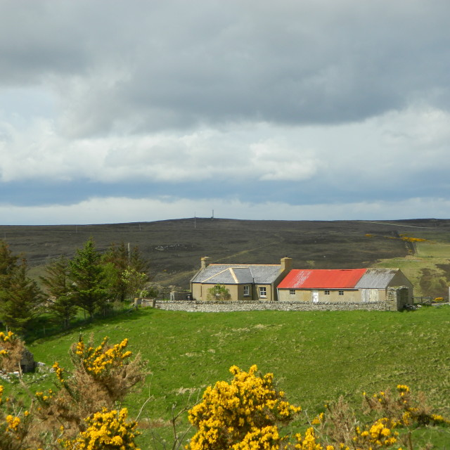"""""""Red Roof, Sutherland"""" stock image"""