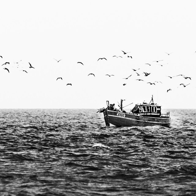 """A Fisherman's Follow"" stock image"