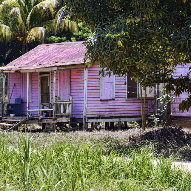 """Caribbean old fashioned house"" stock image"