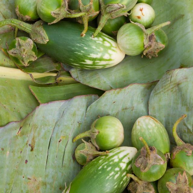 """Green aubergines"" stock image"