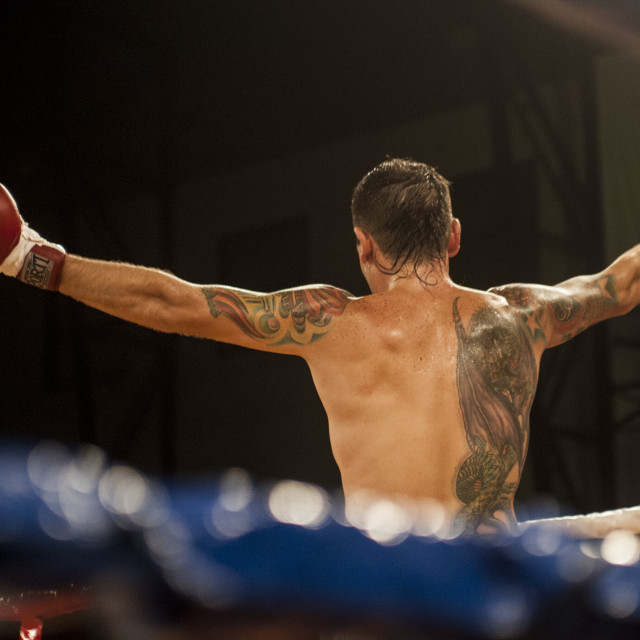 """Boxer celebrate"" stock image"