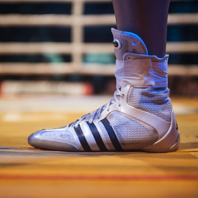 """Boxer feet"" stock image"