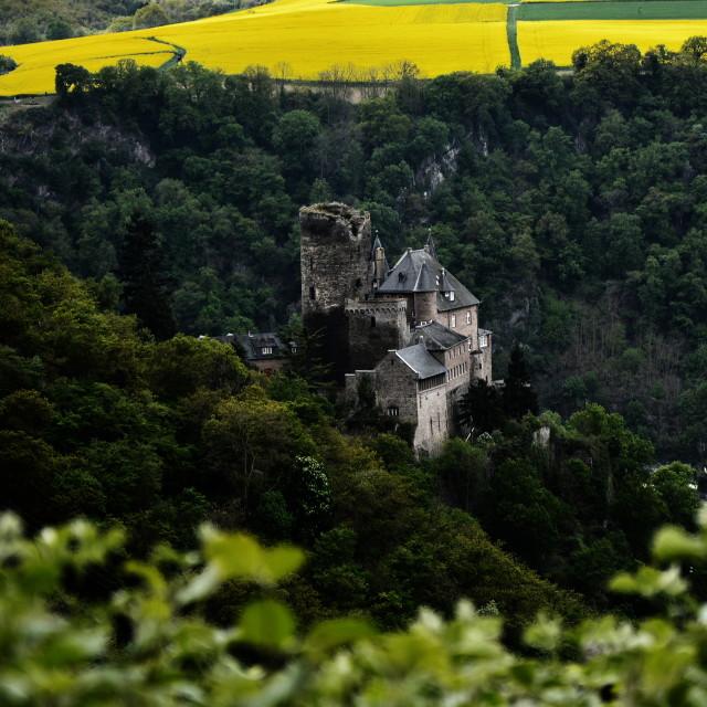 """Burg Katz Castle"" stock image"