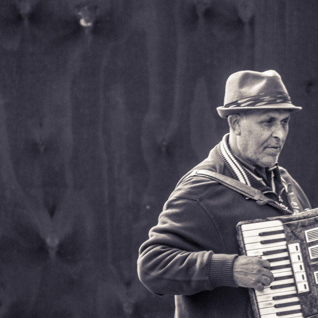 """The Accordion Player"" stock image"