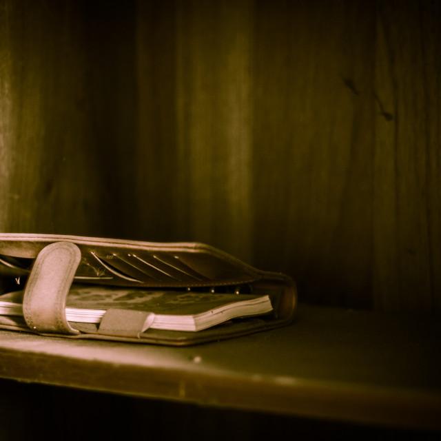 """Dusty Journal on a Shelf"" stock image"