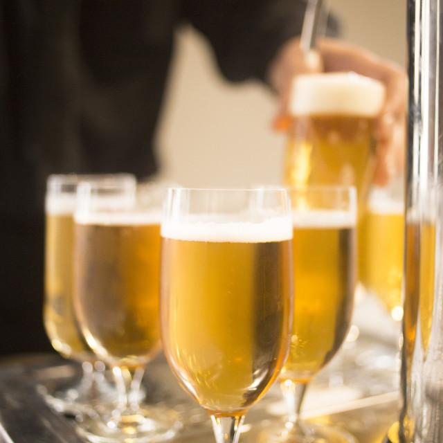 """Lager draft beer glasses pump in restaurant bar"" stock image"