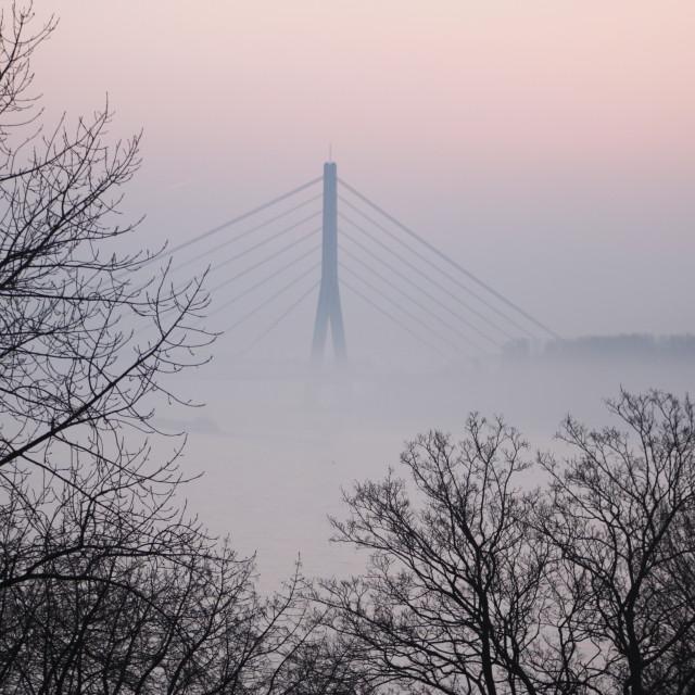"""Mist on Rhine River"" stock image"
