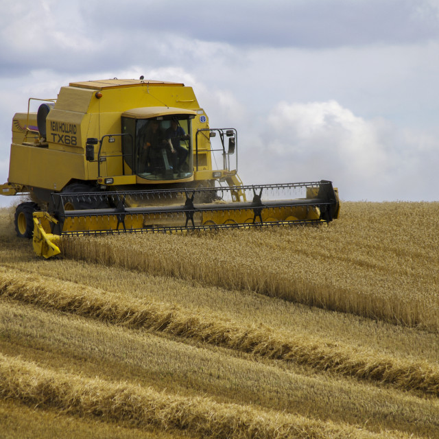 """""""New Holland TX68 combine harvester"""" stock image"""