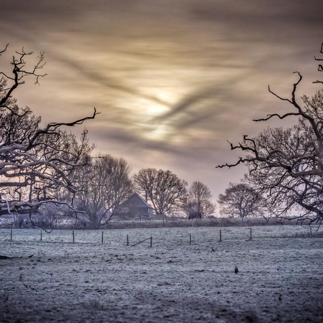 """""""Cold Soft Morning Sunrise"""" stock image"""