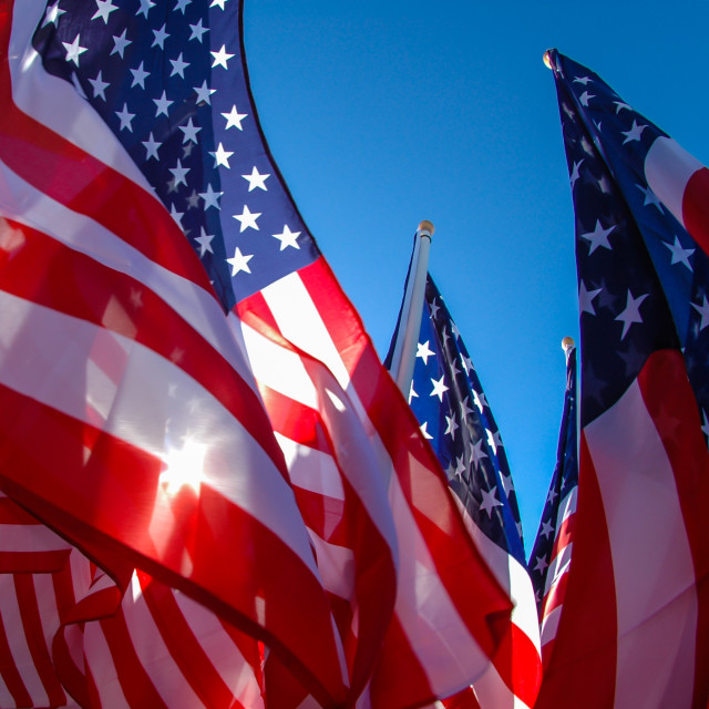 """American Flags"" stock image"