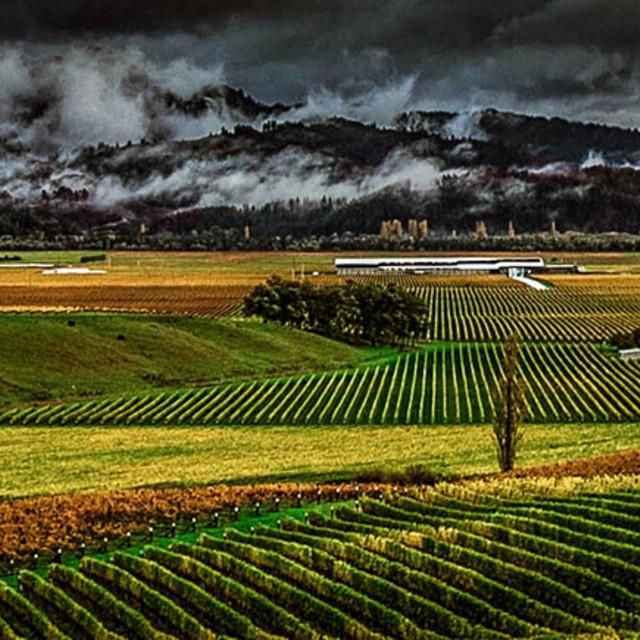 """Delta Storm, Marlborough"" stock image"