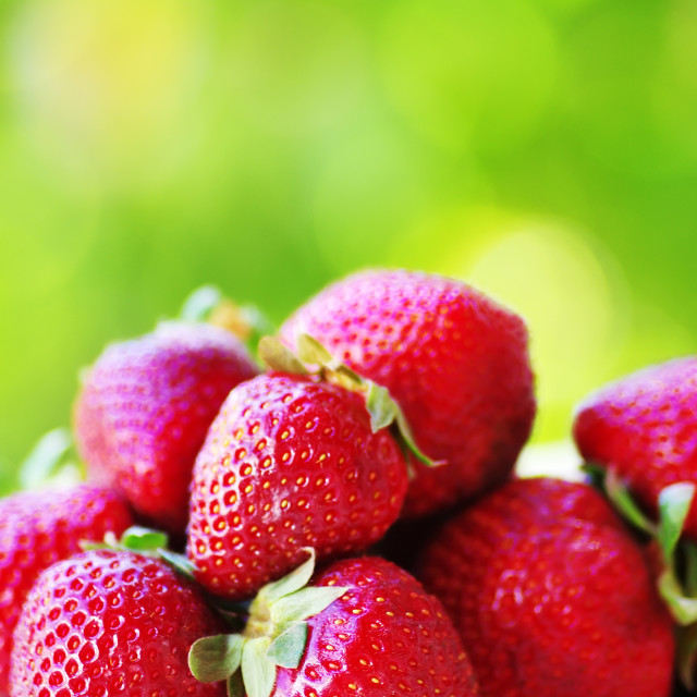 """""""Fresh strawberrs in natural green background"""" stock image"""