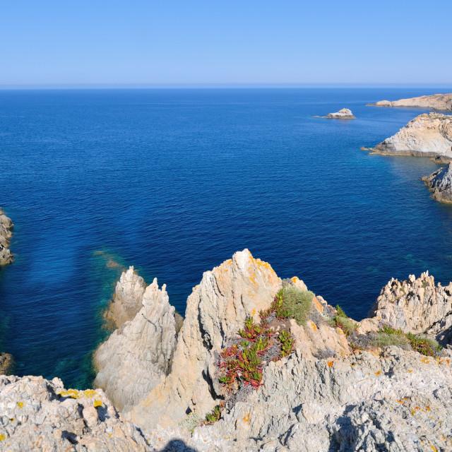 """Corsica rock coast"" stock image"