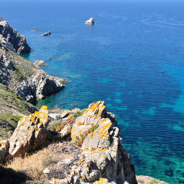 """""""Sea and cliffs - Corsica- Revellata"""" stock image"""