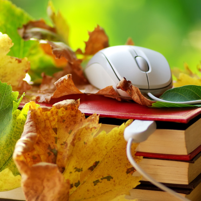 """""""Mouse and leaves on book."""" stock image"""