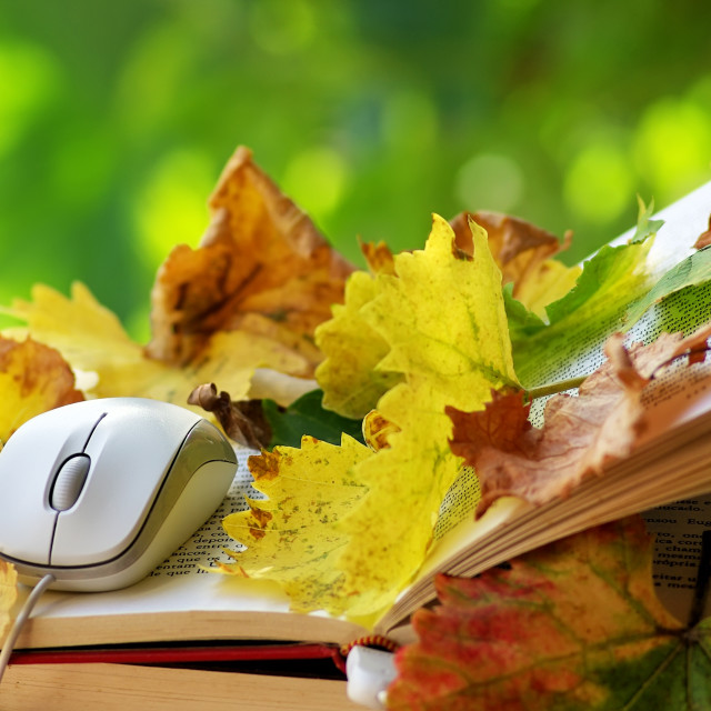 """""""Mouse and leaves on open book."""" stock image"""
