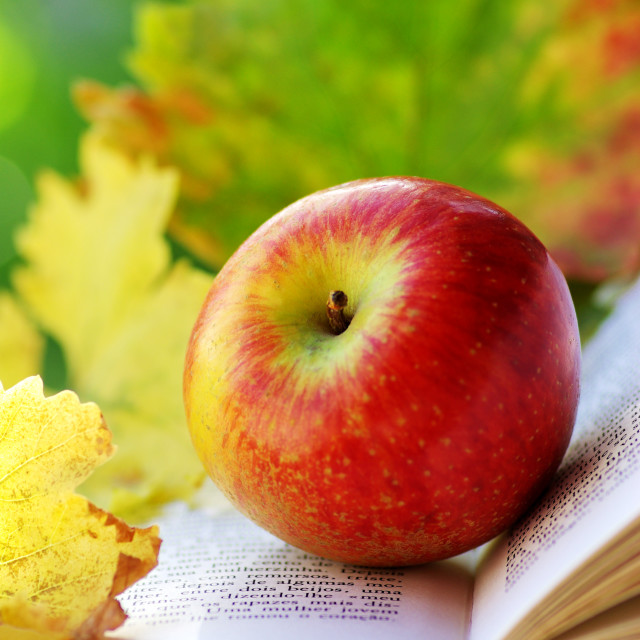 """Apple and leaves on book."" stock image"