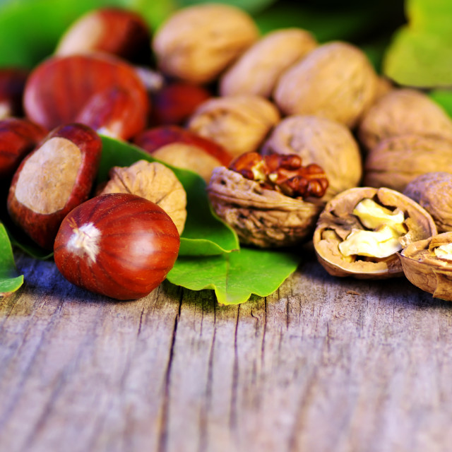 """chestnuts and walnuts on wooden table"" stock image"