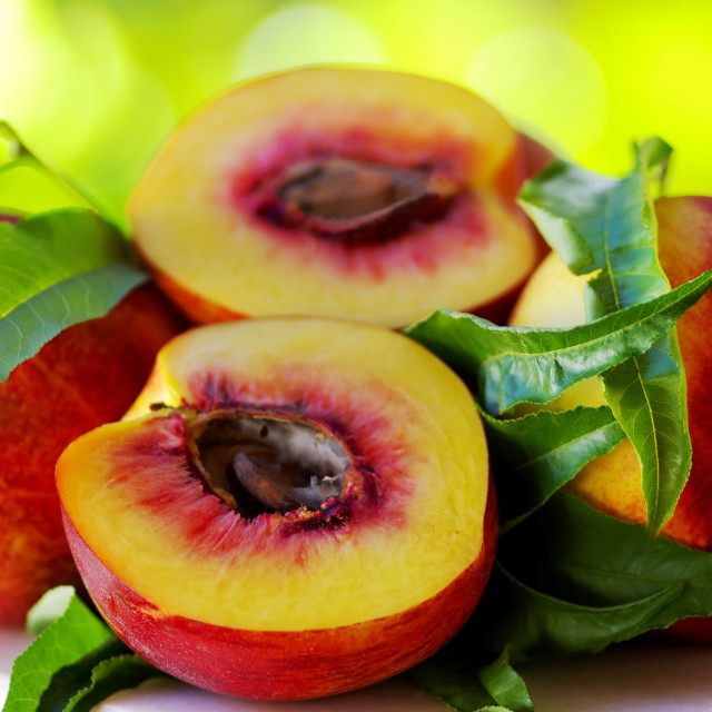 """Sliced peachs on green background"" stock image"