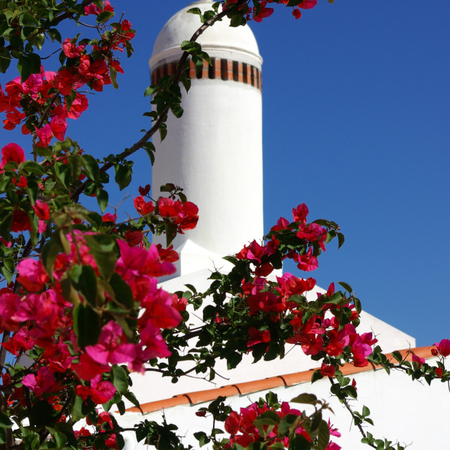 """Traditional chimney in Alentejo."" stock image"