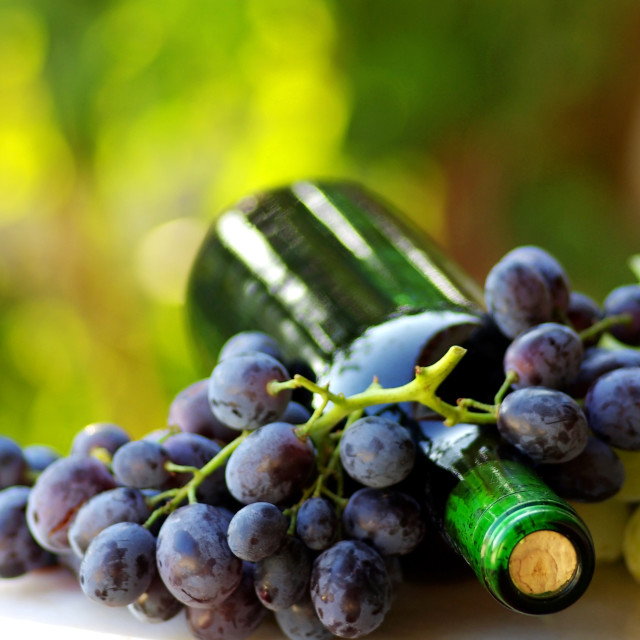 """Bottle of red wine next to the black and white grapes."" stock image"