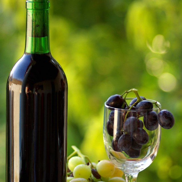"""""""Bottle of red wine next to the black and white grapes."""" stock image"""