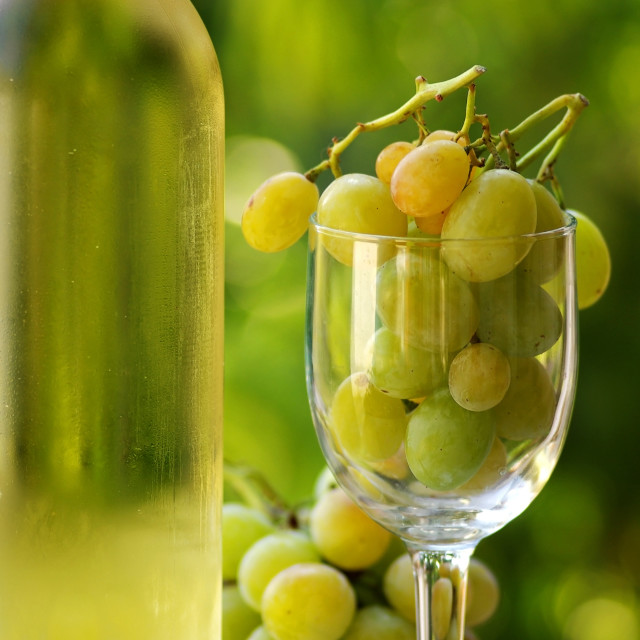 """Bottle of white wine with full glass of grapes."" stock image"