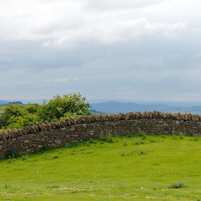 """""""Dry Stone Wall In Cotswold Hills"""" stock image"""