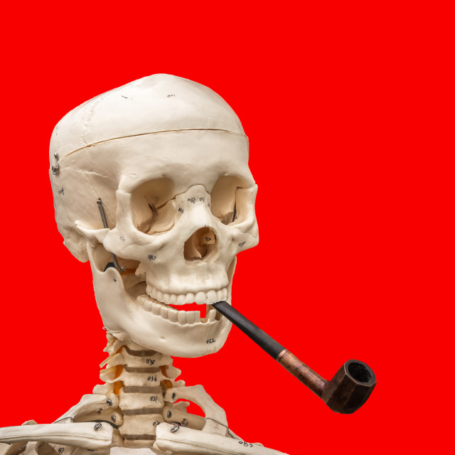 """Smoking Never Harmed Me!"" stock image"
