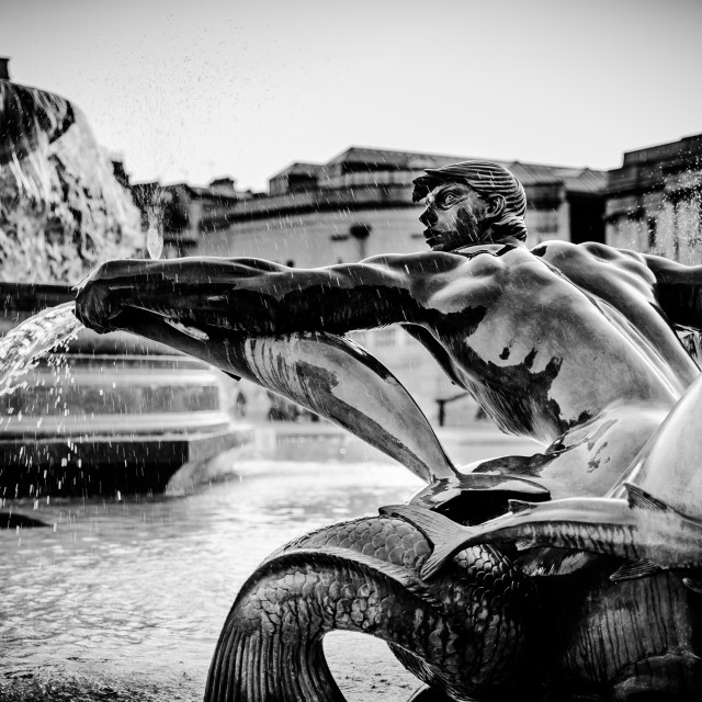 """Trafalgar Fountain #1"" stock image"