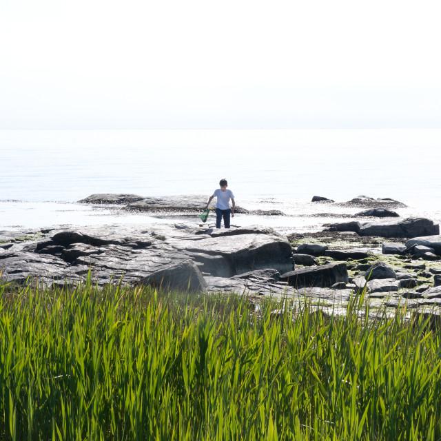 """Boy crabfishing with net"" stock image"