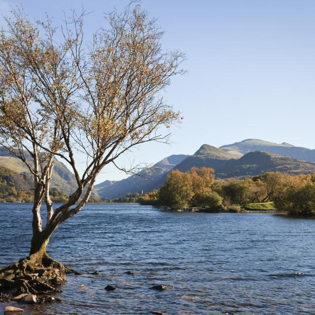 """Llyn Padarn Snowdonia"" stock image"