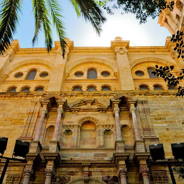 """""""Cathedral in Malaga"""" stock image"""