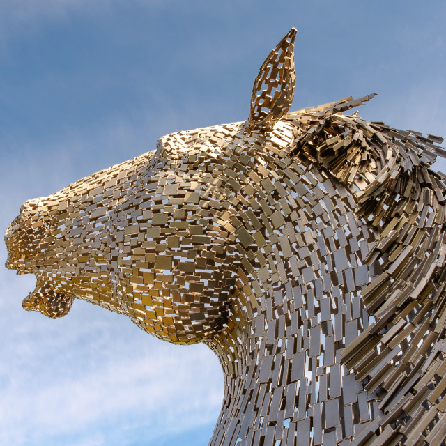 """Mini Kelpie, Scotland"" stock image"