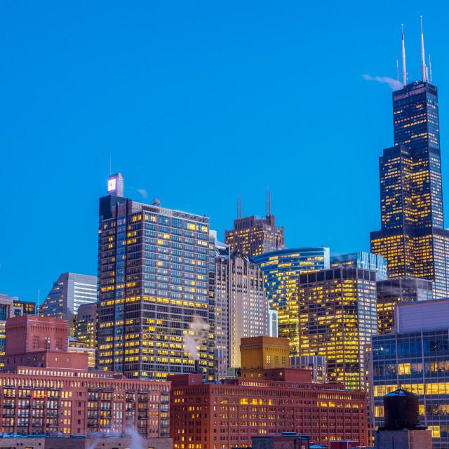 """Chicago Night View"" stock image"