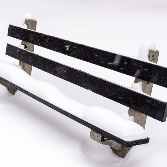 """Snow Covered Bench"" stock image"