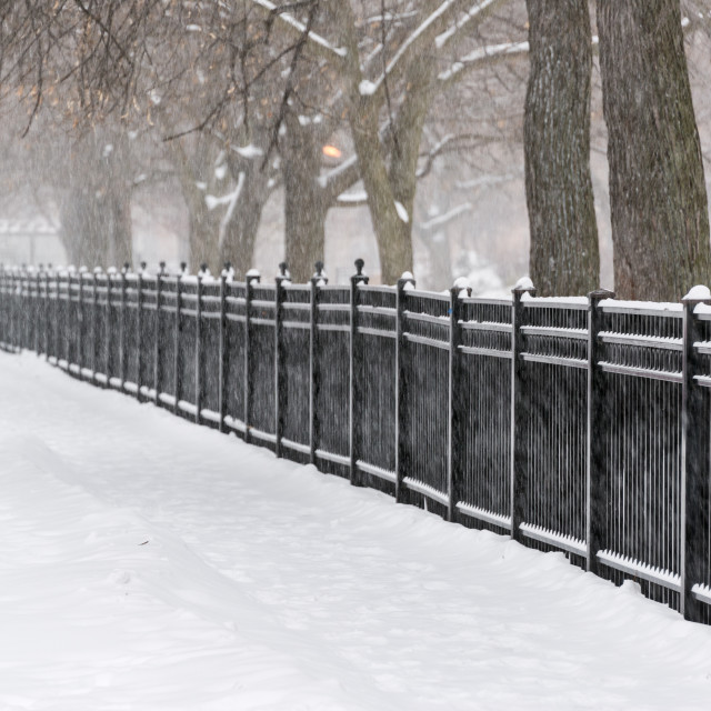 """Chicago Snow Storm"" stock image"