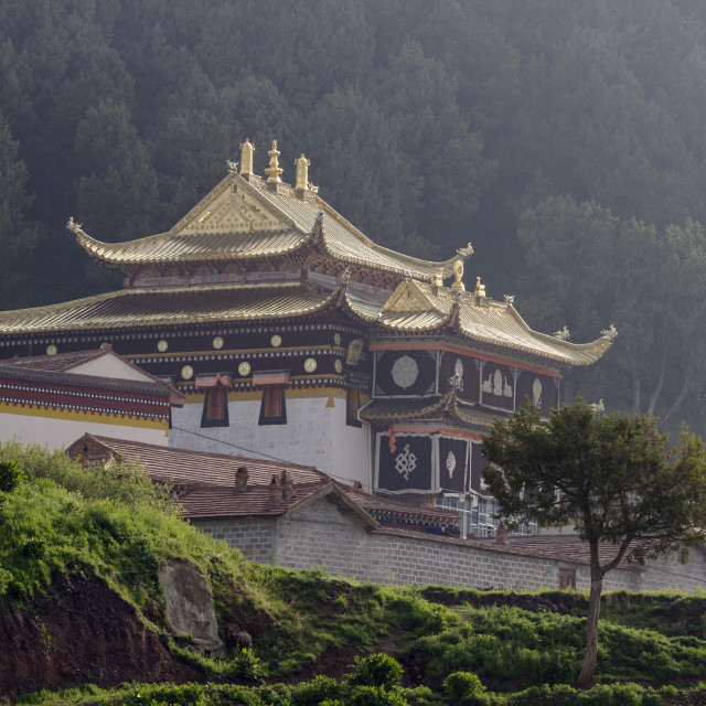 """Langmusi Temple"" stock image"