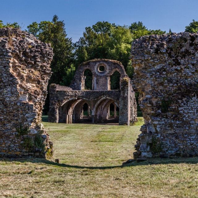 """Waverley Abbey Ruins"" stock image"