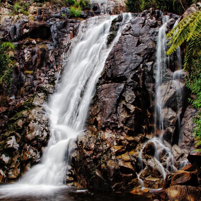 """Steavenson Falls"" stock image"