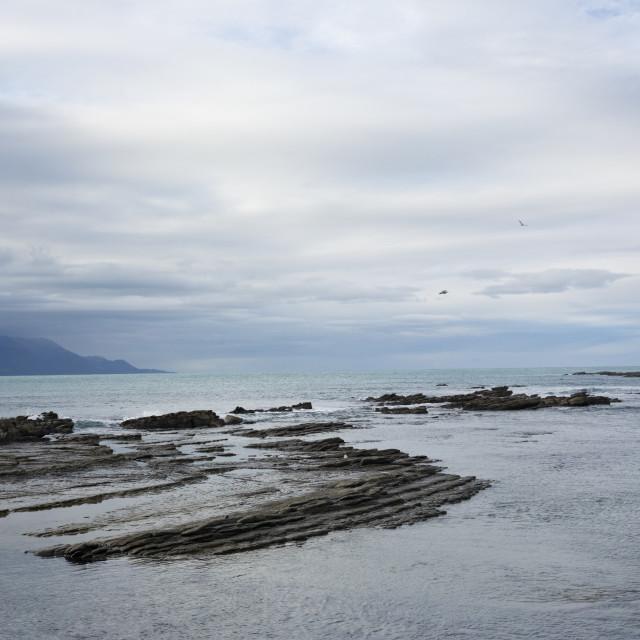 """Kaikoura Beach-2"" stock image"