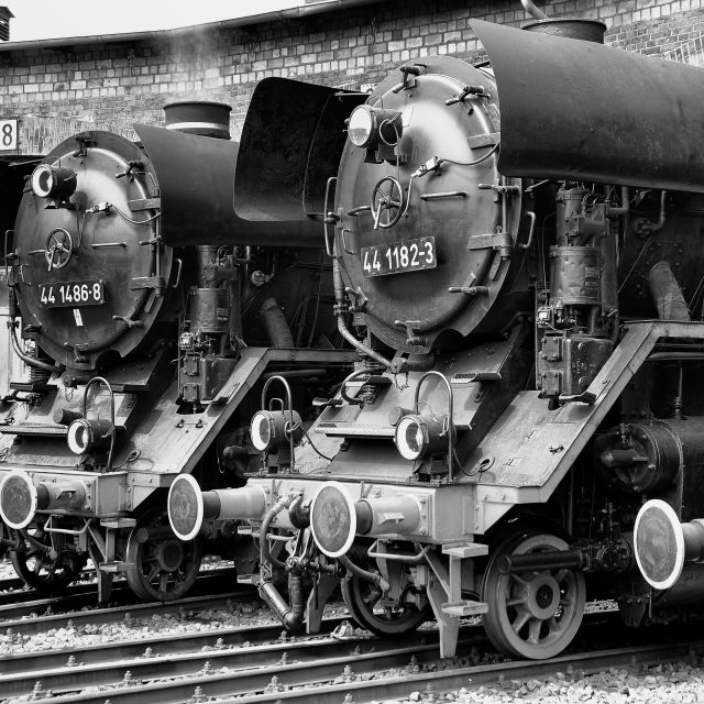 """Steam Locomotives on the Roundhouse"" stock image"