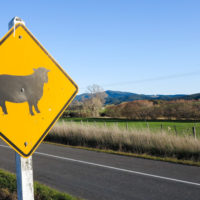 """rural road sign"" stock image"