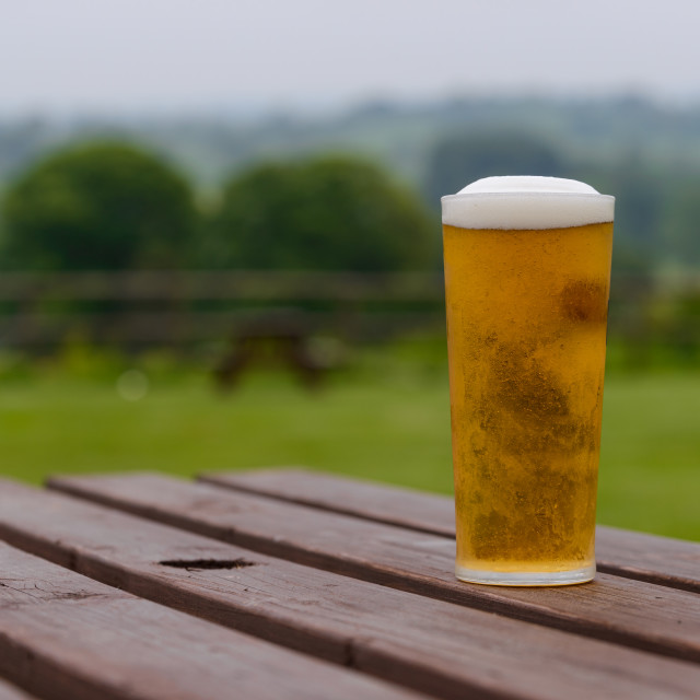 """""""pint of lager on table"""" stock image"""