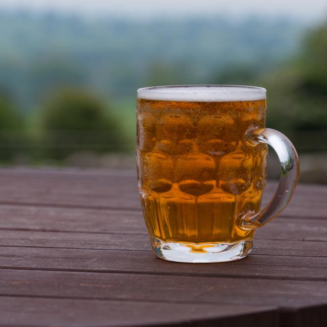 """""""pint of beer in beer garden"""" stock image"""
